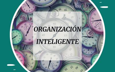 Profesor de español online: la organización perfecta